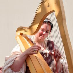Straattheater - de harpiste