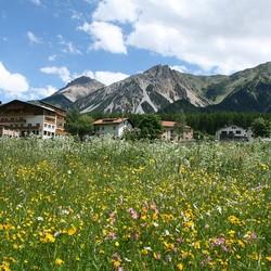Mooi berglandschap in Süd Tirol