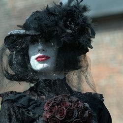 Zwarte weduwe.