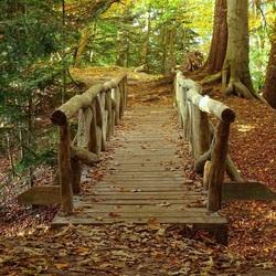 Stoere brug
