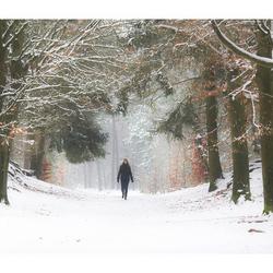 'Zoomland' in de sneeuw