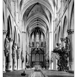 Alleen in de kerk