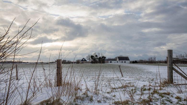 Nog een laatste sneeuwfoto. - Iederen nog bedankt voor alle fijne commentaren op mijn laatste foto.<br /> <br /> Nog eentje van de vele sneeuwfoto&#