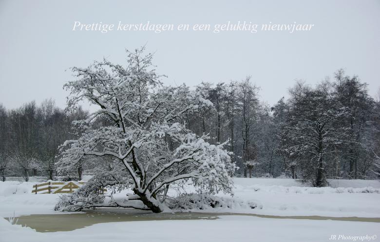 Prettige feestdagen - Ik wens iedereen hele fijne feestdagen en een gezond 2013