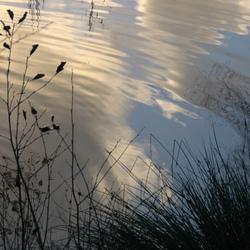 Water wolken