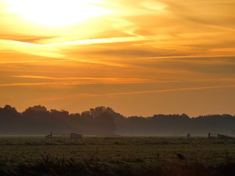 Een mooie, vroege herfstmorgen - Wat kleur kan doen op een mistige morgen
