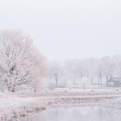 Winterwonderland bij zonsopkomst