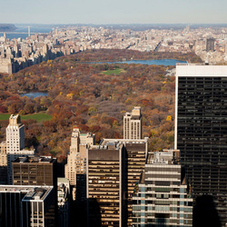 Herfst in Central Park
