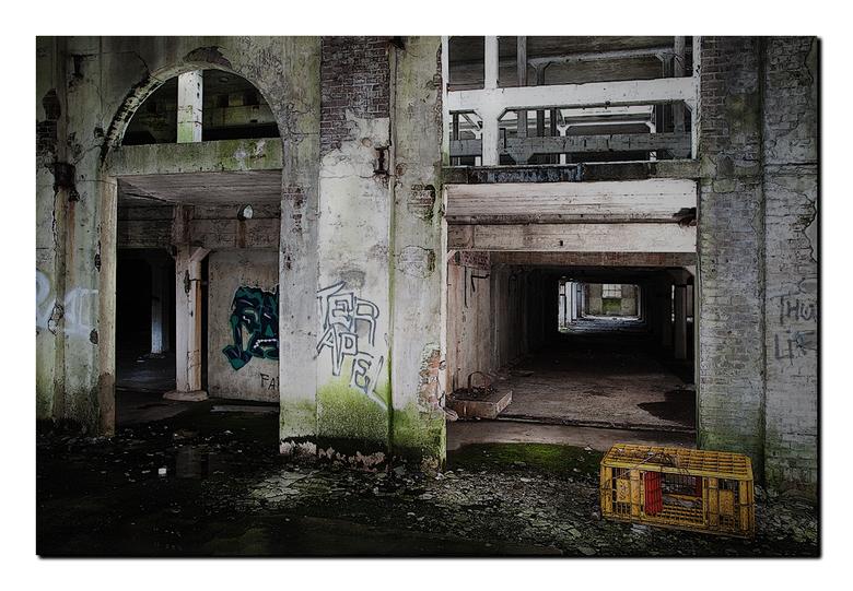 Urban Avebe - Even gisteravond met maat Erik aan het Urbexen geweest. Dit is een oude aardappelzetmeel fabriek waar we nog lang niet zijn uitgekeken.