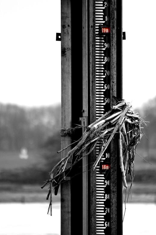 Hoogwater.. - Hoogwaterstand aan de Maas in Kessel...
