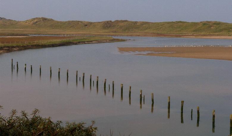 Het Zwin. - Natuurreservaat het zwin is een bekend en mooi reservaat bij Cadzand - Bad in Zeeland.<br /> ook effies in het groot kijken.<br /> 18 ok
