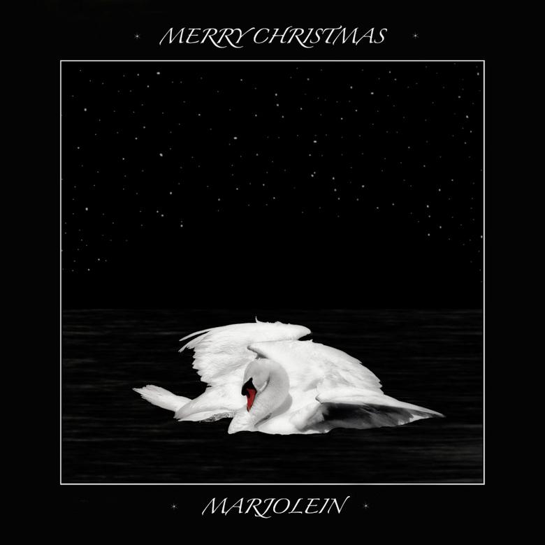 Merry Christmas - Ik wil jullie allemaal hele fijne kerstdagen toewensen, niet te veel de nadruk leggen op de verplichtingen, maar juist de dingen gaa