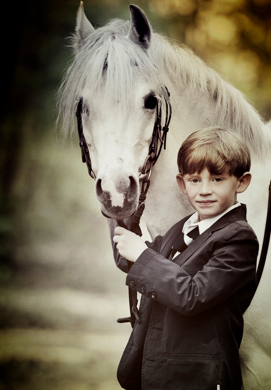 Mijn paardje