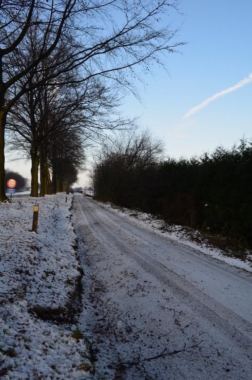 29 december 2014 (100) - Zandweg