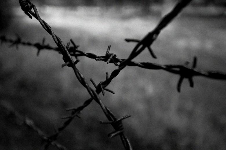 Westerbork 1 - Vandaag en de komende dagen even geen mooie vakantiefoto&#039;s uit Nieuw-Zeeland.<br /> Uit eerbetoon aan de meer dan 100.000 Nederla