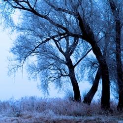 die ene winterdag