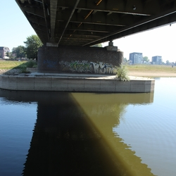 tys damhuis  (382)