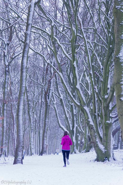 Rondje hardlopen - Ik blijf nog even bij de winterse taferelen als jullie het niet erg vinden want langzamerhand is alles hier weer verdwenen  <img  s