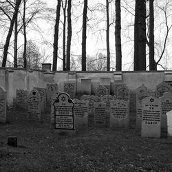 Joodse begraafplaats@pl