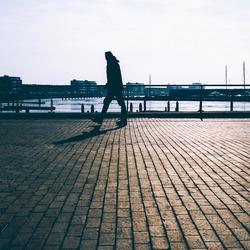 Man in harbor
