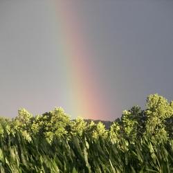 Regenboog bij de Waginger see (nabij Chiemsee)