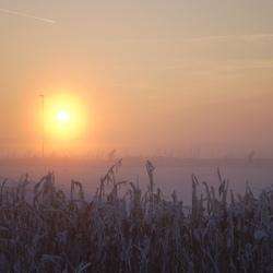 Winter in Biddinghuizen