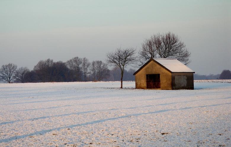 schuurtje - Dat zie je meer hier in Twente, van die eenzame schuurtjes middenin een weiland.