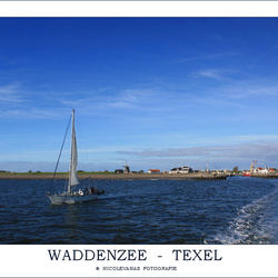 Texel VII