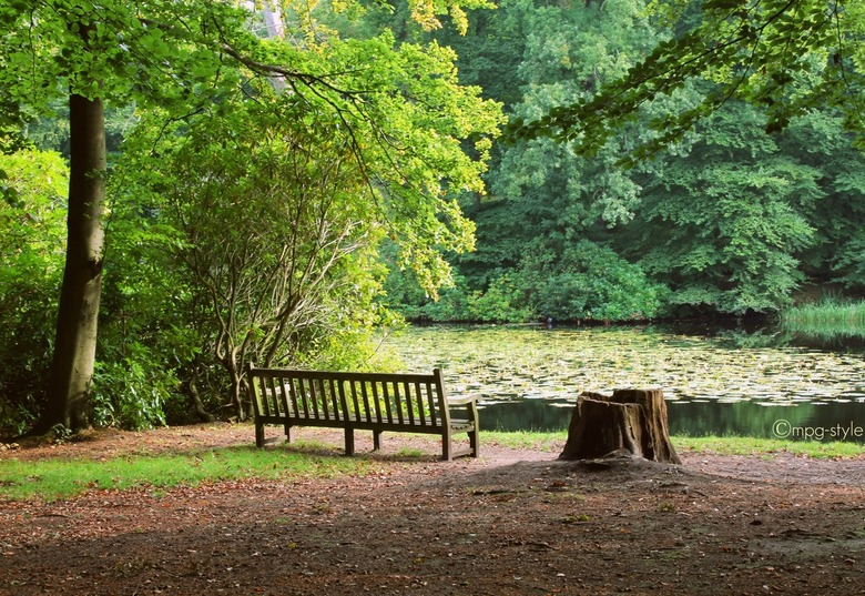 Chilling out (ippawards schoolopdracht fotografie: 'Nature') - Misschien kennen jullie www.ippawards.com wel, waar je je eigen foto's kan uploade