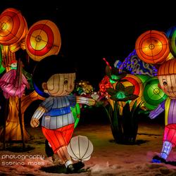 Antwerp China Light Zoo