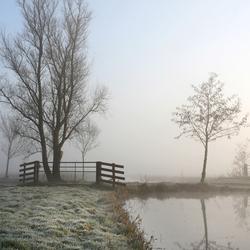 Bevroren mist