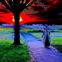 MODERN ART SUNSET.jpg