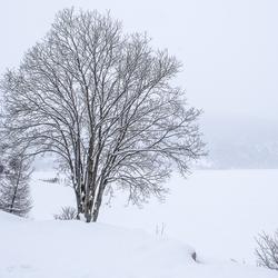 winters einde 2017