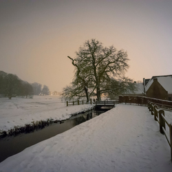 Winter in Sonsbeek Park in Arnhem