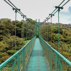 Hangende brug in Monteverde Cloud Forrest