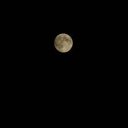 de volle maan