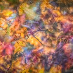 Kleuren in beweging