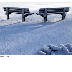 Witte stilte
