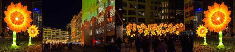 GLOW 2019 - Project 21 Zonnebloemen voor van Gogh_III -