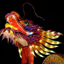 China Lights Ouwehand