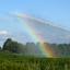 regenboogje bij een waterkanon