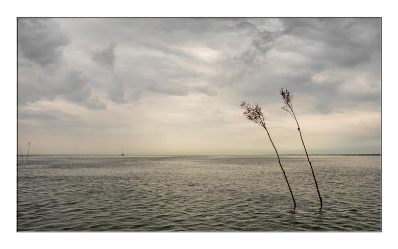 Het Wadden Gevoel - Het was een rustig ochtend met weinig schepen op het water. Wij namen ons kans schoon, na dagen lang zware wind, om Nederland weer