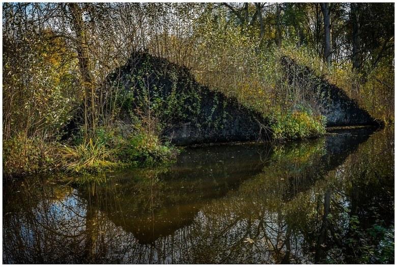Reflection -