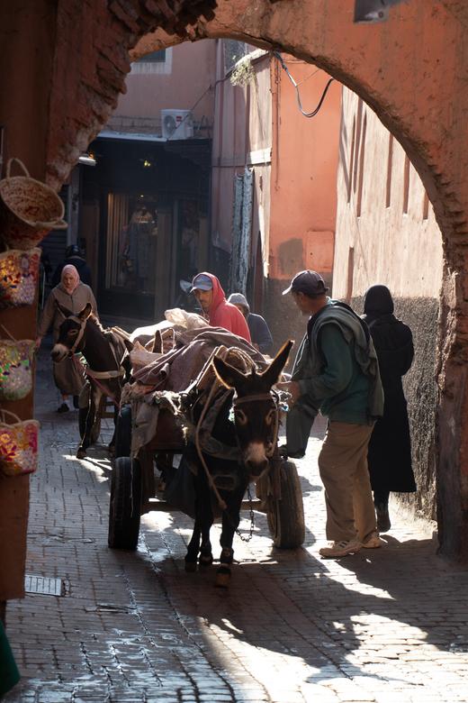 Where the streets have no name - Dagelijks straatbeeld in de kasbah's van Marrakech. Paarden, ezels, bromfietsen, alles komt je in een tijd van 2