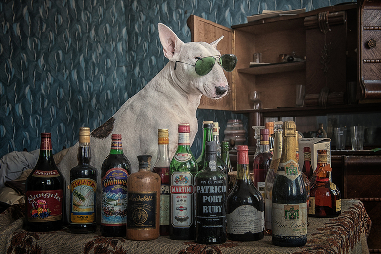 I drink alcohol ...