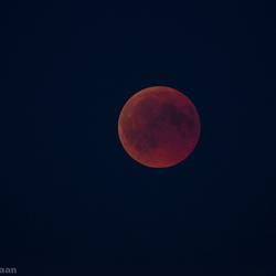 Bloedmooie maan