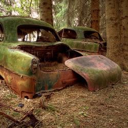 Car graveyard 4/4