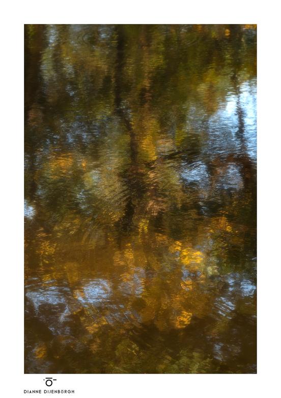 Water colours.. - Alles werkte mee, ingrediënten voor een waterverf uitvoering. Wind kleur, beweging, water, licht, zon... Als een blij kind stond ik