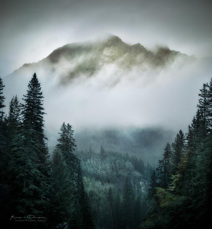 Mountain Greenery -