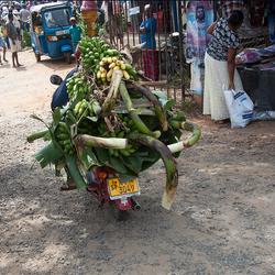 op de banaenmarkt 8 1903028237Rmw